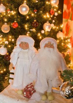 Kerstbomen en kerstman huren