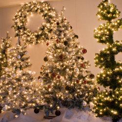 Kerstbomen en kransen huren
