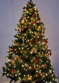Opgetuigde kerstboom te huur