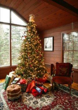 Impressie kerstboom