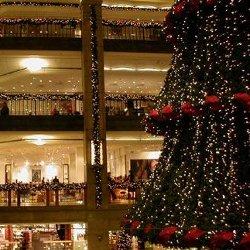 Kerstimpressie kerstboom buiten